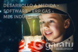 desarrollo de software a medida para la industria