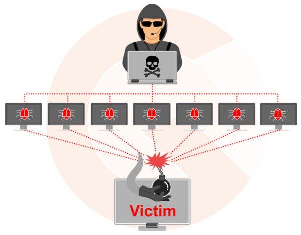 Ataques DoS - DDoS convierten a tu ordenador en un zombie